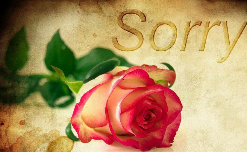 Spijt komt altijd na de begane zonde